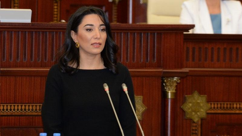 Azərbaycanın yeni Ombudsmanı kimdir? – DOSYE