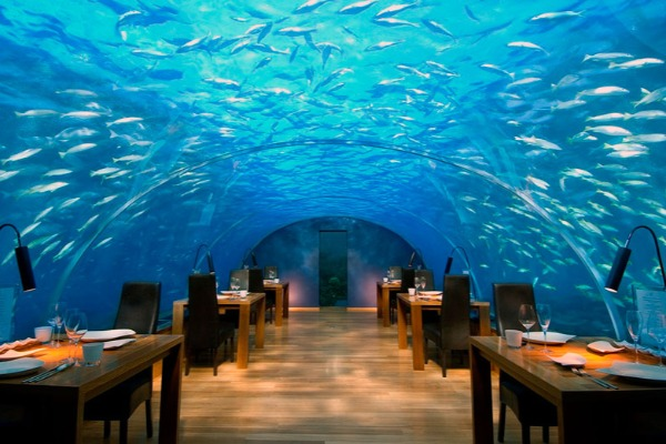 Restoranlar Yeni il hazırlığına başlayıb – VİDEO